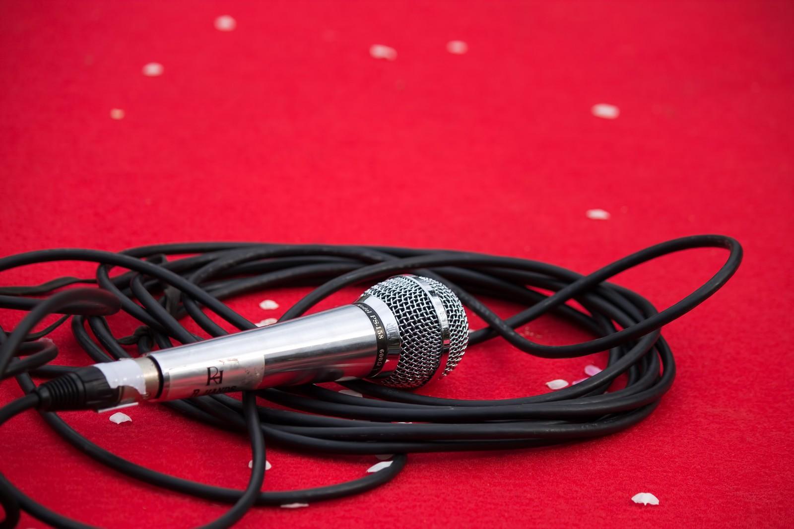 声も歌も!歌手としても活躍する声優さんたちをご紹介!